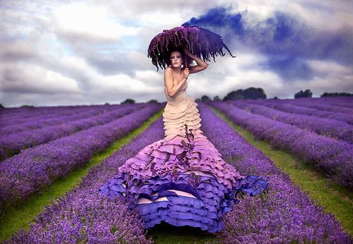 Wonderland : The Lavender Princess / Kirsty Mitchell
