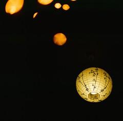 room-sky (kymak) Tags: light home dof bokeh room velvia fujichrome rvp100f f35 75mm lightsources schneiderxenar3575 rolleiflex35a modelk4a automat6x6 mxtype2
