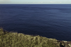 The Pacific from a Sydney cliff (roundtheplace) Tags: ocean sea cliff seascape water landscape sydney australia
