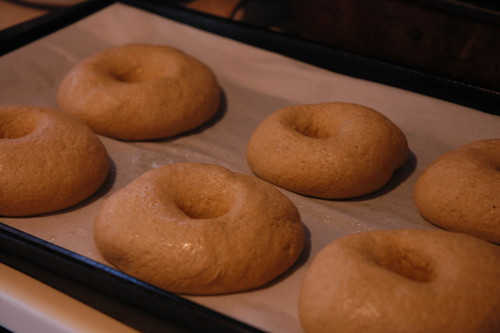 Bagels about to be boiled
