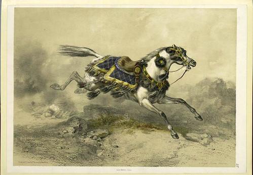 Caballo arabe (1851)