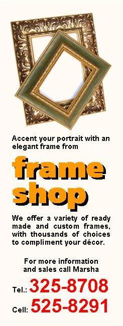 FLY SHEETS v1 - frame shop - feb 2009