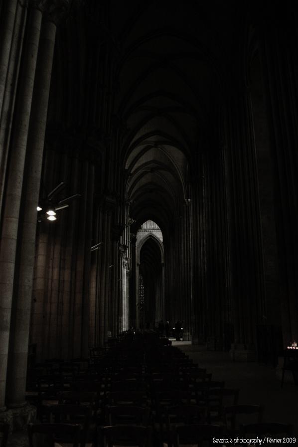 Notre Dame #5