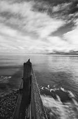 swell (stumayhew) Tags: longexposure sea sky blackandwhite bw water canon mono coast movement waves coastal 5d swell groin leysdown sheppy