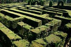 the labyrinth (anitacanita) Tags: barcelona labyrint fifthdaybcn