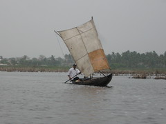 Fishing sailboat (jmasher) Tags: sailboat fishing benin ganvie touraroundtheworld
