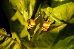 green is hope (dayseven) Tags: green fashion yellow hope salad handmade gifts trendy fancy accessories earrings dayseven scratch springgifts