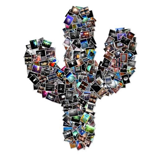 iPhone Cactus Collage