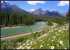 "Morant's Curve. Bow Valley Parkway, Banff National Park, Canada (Joalhi ""Back in Miami"") Tags: canada banff bowvalleyparkway morantscurve abigfave natureselegantshots vosplusbellesphotos coth5"