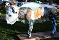 "Part of the ""Where the Painted Buffalo Roam"" exhibit, West Yellowstone, Montana (IMG_1567a) (Alaskan Dude) Tags: travel art buffalo montana wildlife westyellowstone paintedbuffalo wherethepaintedbuffaloroam"