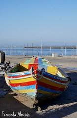 S.Jacinto (Fernanda Almeida 2008) Tags: portugal cores barco ria aveiro sjacinto ilustrarportugal