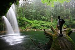 Upper Butte Creek falls (Matt Abinante) Tags: oregon buttecreekfalls upperbuttecreekfalls
