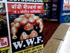 muscles powder bodybuilding definition cuts wwf
