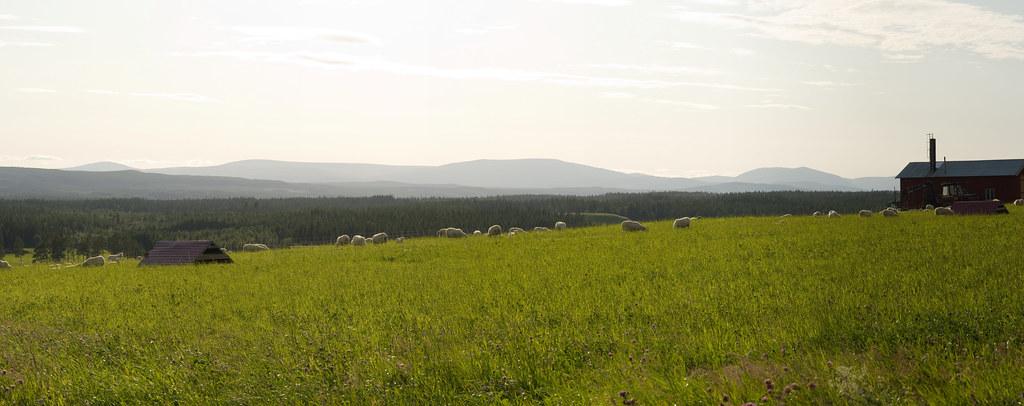 24615-24620 - Panorama
