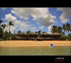 Saman #24 (r.batista) Tags: ocean vacation sun beach nature water landscape spring sand dominicanrepublic countries atlanticocean 2009 saman