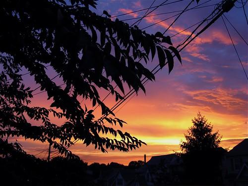 Northern New Jersey  August sun set