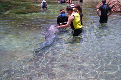 Discovery Cove with students