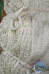 TX 2. // Slechtenh...r (mariekefotografeert) Tags: white waddeneiland hips wit texel netten mariekefotografeert vakantieineigenland project366 tvtas