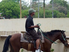 Distracted Rider (Reinalasol) Tags: people horse person flickr candid human panama unposed candids 2009 humans april2009 panama2009 reinalasol marfos horsebackridinghorsebackreinssaddle