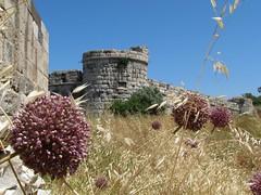 Neratzia (The Castle of Kos)