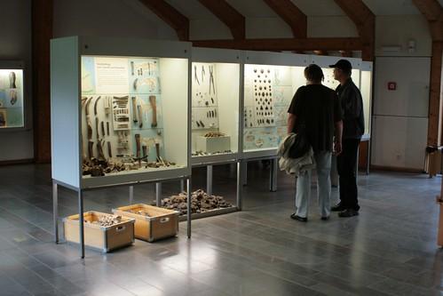 Ehemalige Schauvitrinen im Wikinger Museum Haithabu vor dem Museumsumbau - WMH 13-09-2009