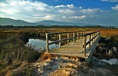 Ponte no Esteiro do Mio (_madmarx_) Tags: sky rio puente madera agua colours ponte galicia nubes madeira pontevedra auga aguarda estuario esteiro canoneos450d platinumheartaward riomio madmarx