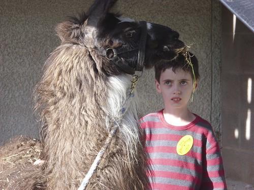 Peter with Caroline's Llama