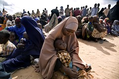 UNHCR News Story: Conflict and drought force more than 50,000 Somalis to flee to Kenya this year (UNHCR) Tags: africa camp children women kenya refugees nairobi hijab conflict yemen arrival uganda ethiopia fighting information unhcr displacement newsstory djibouti somalis idps camplife khimar kakuma dadaab unrefugeeagency eastandhornofafrica internalviolence