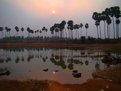 A January sunset (asis k. chatt) Tags: sunset sun nature naturephotography naturalpatterns otw naturalharmony mycameraneverlies naturewatcher