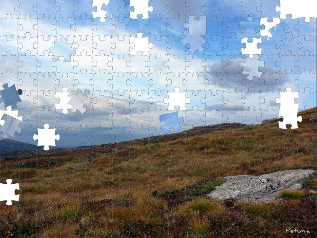 SWF Puzzle