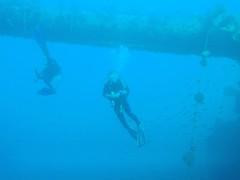 PC010223 (flip_lmb) Tags: egypt scuba diving el gouna elgouna