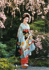 Maiko Girl Postcard (crayolamom) Tags: woman girl japan spring kyoto asia postcard maiko privateswap