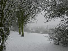 SNOW APOCALYPSE, FEB 09 (rubberdreamfeet) Tags: nottingham uk snow weather britain apocalypse freeze armageddon uksnow