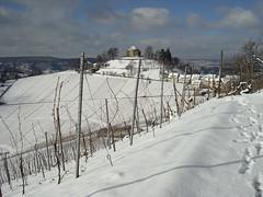 Grabkapelle auf dem Rotenberg (deruhu99) Tags: schnee winter white snow landscape vineyard stuttgart landschaft weinberg rotenberg weis uhlbach