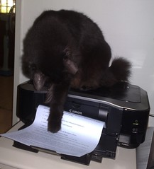 CC via flickr Niko playing with printer von whitecat singapore