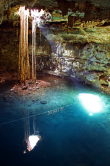 Cenote Samula - Yucatn (Nino H) Tags: light nature water mxico swim mexico agua eau place lumire great roots yucatan valladolid cenote mexique rays dri rayons racines groundwater gouffres
