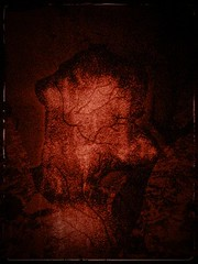 Inside out (anita anand) Tags: red digital photoshop altered dark branches veins blend anitaanand notjustphtotograph anitaanandsphotography