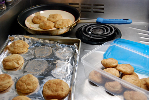 Various Stages of the Great Snickerdoodle Transport
