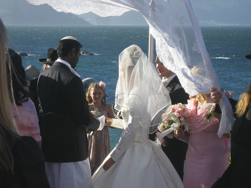 Ceremony at Boulders Beach