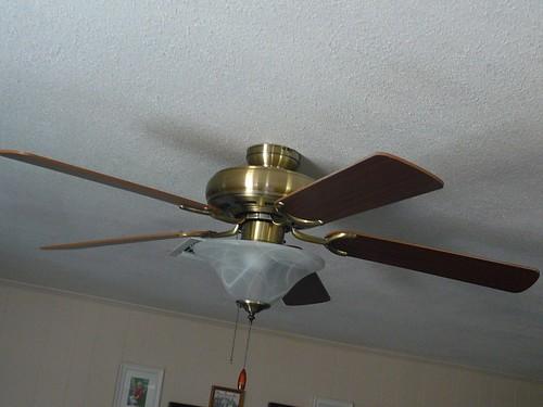 tx surv fan