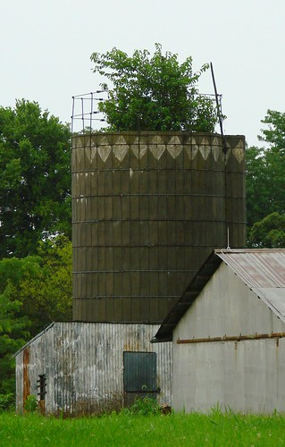 Silo with tree different view