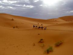 Sahara (amorey) Tags: sahara morocco maroc merzouga saharadesert adventuretravel ergchebi