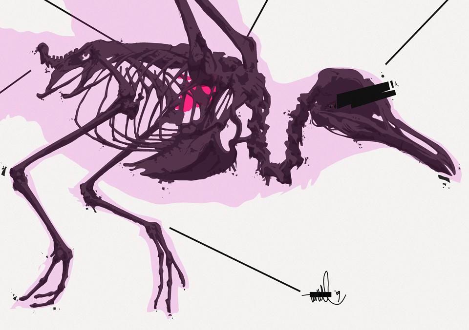 zensur bird - detail