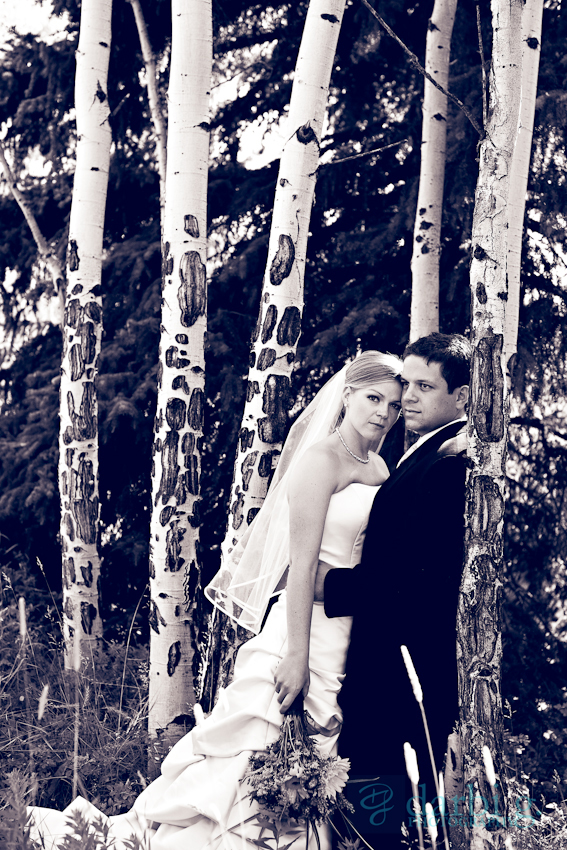 DarbiGPhotography-kansas city wedding photographer-CD-113