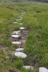 組み石の上を歩いて・・