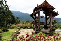 IMG_1048 Queen Sirikit Gardens