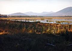 Davis Lake Morning (Boyds Gallery) Tags: oregon highdesert flyfishing davislake