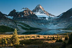 Arrival at Mt. Assiniboine (Marc Shandro) Tags: autumn lake canada mountains fall nature yellow rockies britishcolumbia bluesky glacier northamerica tarn lowsun freshwater mtassiniboine karmapotd photoshelter skyandatmosphere