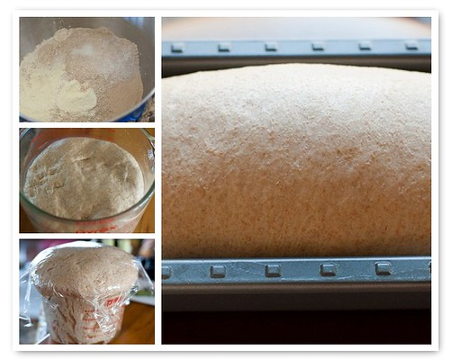 Making Light Wheat Bread