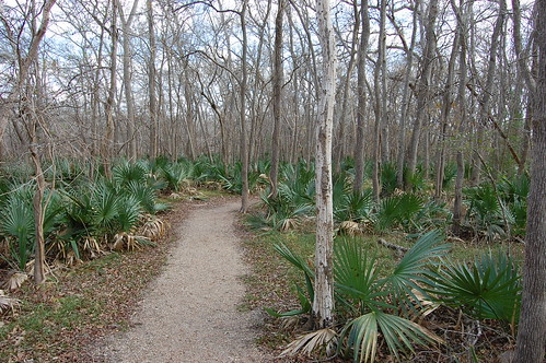 Palmetto State Park Palmetto trail